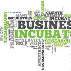 Incubatori startup made in Italy